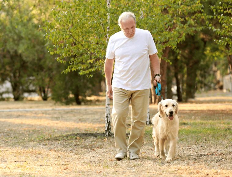 Older Man Walking Dog